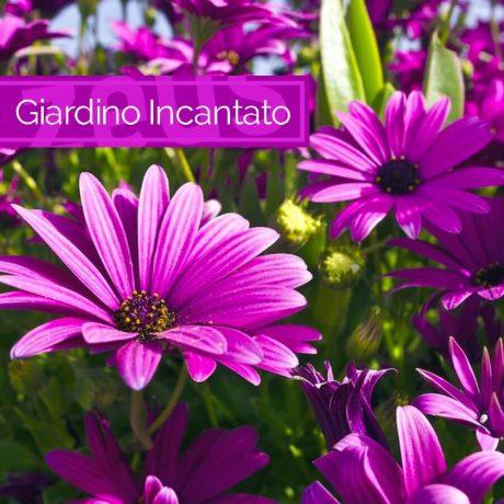 giardino-incantato